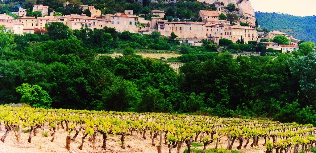 I vini delle Côtes du Rhône