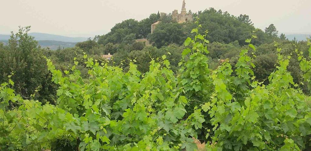 La Languedoc-Roussillon