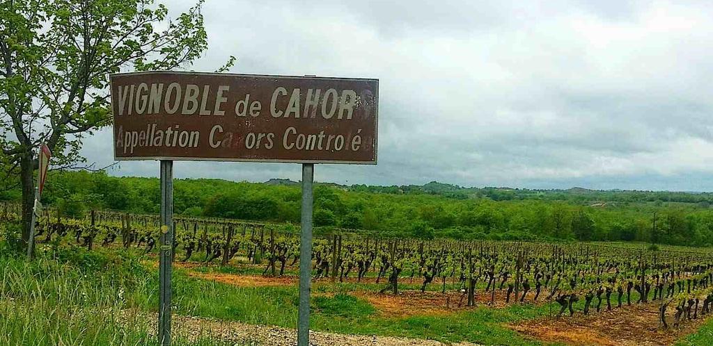 Da Bergerac a Monbazillac e Cahors