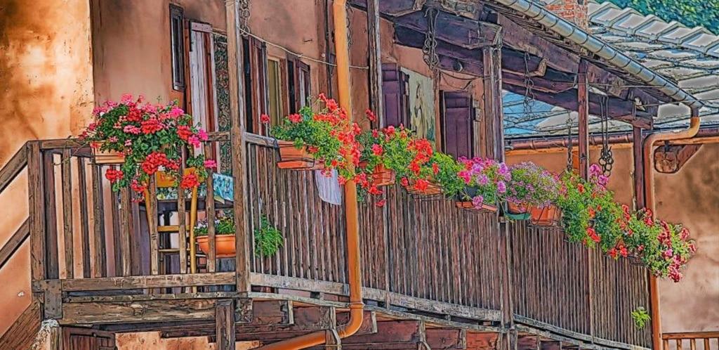 Balconi estivi: cosa scegliere?