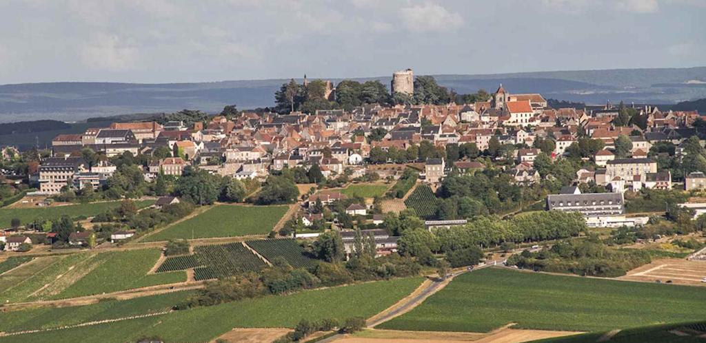 I vini della Valle della Loira