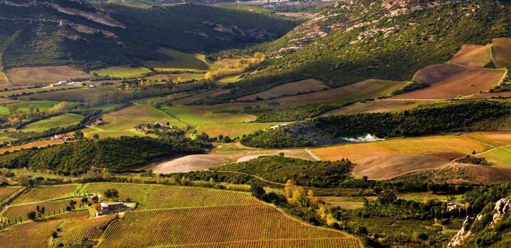 Corsica, un bicchiere colmo di storia