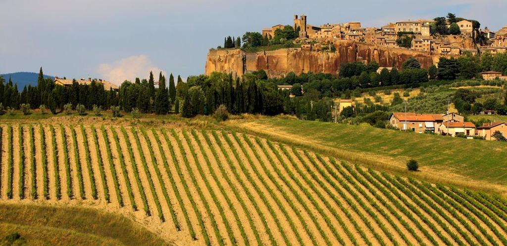 I grappoli dell'Umbria